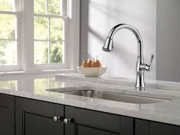 Delta Chrome Kitchen Faucets Faucetcom 9197 Dst In Chrome By Delta