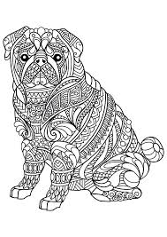 Intricate Coloring Page Dog Adult Pages Free Printable Difficult Pdf