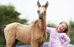 Image of: Pictures Solent News Photo Agency Ppcorn 19 Inspiring Photos Of Animals With Down Syndrome