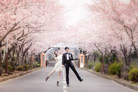 top sellers top ranked pre wedding package 1 hellomuse com