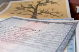 How To Get A Replacement Birth Certificate Vitalchek Blog