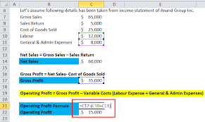 Gross Profit Formula Excel Operating Profit Margin Formula Calculator Excel Template