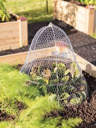 en wire cloche with extension
