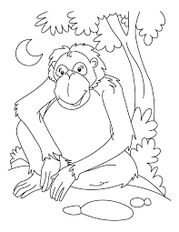 Small Picture Chimpanzee waiting coloring page Download Free Chimpanzee