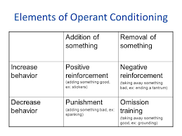 Learning Classical Conditioning Operant Conditioning And