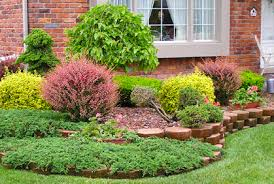Small Picture Garden Design Garden Design with Best Types of Shrubs for
