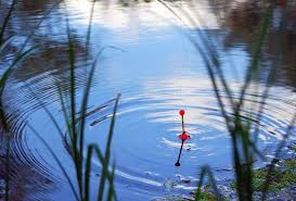Fishing Floats Types How To Set Them Up Badangling