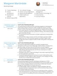 Gallery Of Resume Curriculum Vitae Template