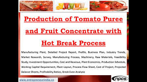 Tomato Sauce Production Flow Chart Production Of Tomato Puree And Fruit Concentrate With Hot Break Process