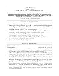 Excellent Summary Of Qualifications For Business Analyst Resume