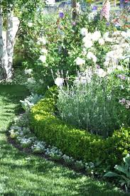 Best 25+ Front yard hedges ideas on Pinterest | Boxwood hedge, Hedges  landscaping and Privacy landscaping