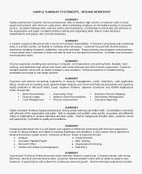 Executive Summary Sample For Resume Example Summary For Resume