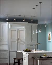 kitchen lighting houzz. Kitchen Lighting Flush Mount Awesome Discount Ceiling Lights Houzz U