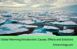 essay on global warming and its effects when to write numbers as essay on global warming and its effects