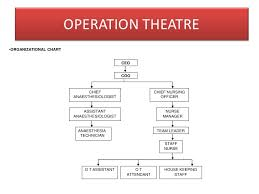 Theatre Organization Chart Planning And Management Of Clinical Service Department