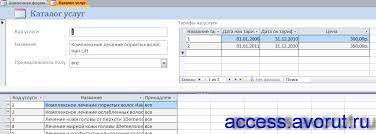 Скачать базу данных access Парикмахерская Базы данных access  Скачать базу данных access Парикмахерская Форма Каталог услуг