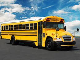 Images Of Blue Bird Vision School Bus 2008