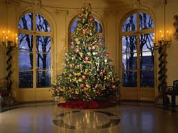 Elegant Christmas Tree Decorating Home Decor Christmas Trees With Others Excellent Christmas Tree