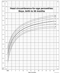Memorable Normal Infant Head Circumference Chart Infant Boy