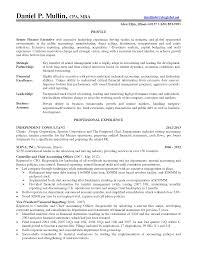 Professional Senior Financial Executive And Controller Resume