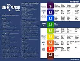 Ph Chart Alkaline One Earth Health Alkaline Food And Ph Chart 8x11 Printed On Waterproof And Durable Plastic Sheet