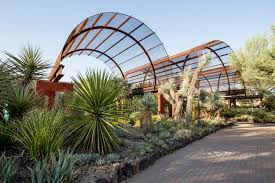 arizona s desert botanical garden is showing a new side of the sonoran garden collage