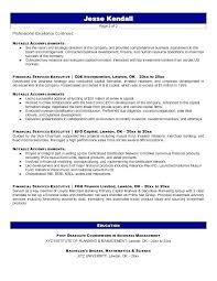 professional resume writers dallas executive resume writers reviews knock  em dead professional writing professional resume writing