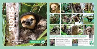 sloths 2019 wall calendar 14 99 10 99