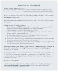 Objective Statement In Resume 30 Sample Professional Objective Photo