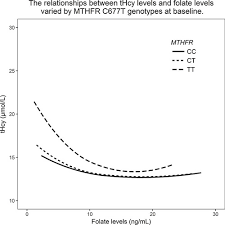 Mthfr Gene And Serum Folate Interaction On Serum