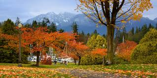 Image result for seasons change