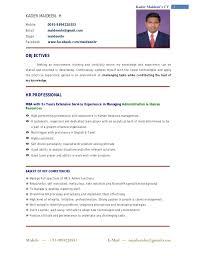 Resume Format For It Pelosleclaire Com