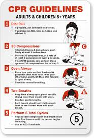 Cpr Chart 2016 Scouts Guides Bsg First Aid Cpr Cardio Pulmonary
