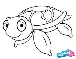 Small Picture 41 best YURTLE images on Pinterest Sea turtles Drawings and Turtle