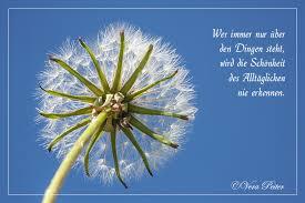 Bild Zitat Zitate Schönheit Natur