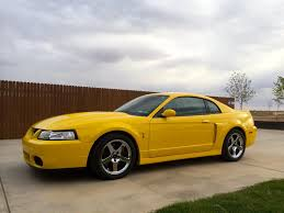 Pictures of Yellow 2004 Cobra Mustang Terminator | Mustang ...