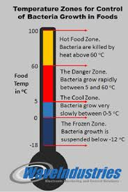 Food Safety Time And Temperature Chart 38 Ageless Food Safe Danger Zone Chart