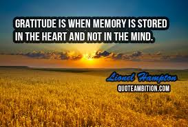 Gratitude Quotes Adorable 48 Gratitude Quotes And Be Grateful Sayings