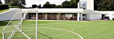 Football Field Carpet  HouzzFootball Field In Backyard