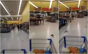Walmart Alvin Tx Video Bats Surround Texas Man Wife Inside Houston Area Walmart