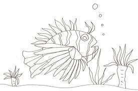 Disegni Di Pesci Da Colorare Immagini Di Pesci Da Stampare