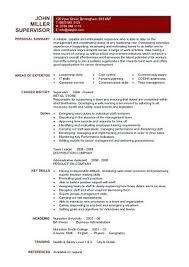 Template Examples Writing A Curriculum Vitae Templates Cv