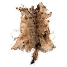 deer skin rug whitetail deer hide deer skin rug cost deer skin rug