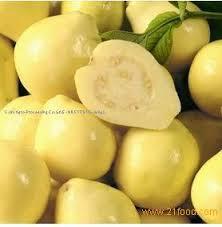 الجوافة تعالج البرد والضغط العالى والاورام السرطانية