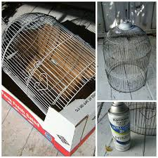 today i want to show you how i took my old bird cage sorry lil fincheade it into a sunny chandelier take a look