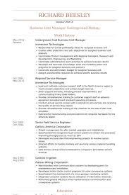 Business Unit Manager Resume Samples Visualcv Resume Samples Database