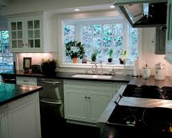 Garden Window For Kitchen Kitchen Kitchen Garden Window Ideas Garden Window Ideas For Shelf