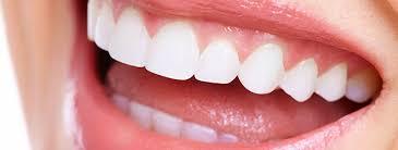 「歯 フリー素材」の画像検索結果