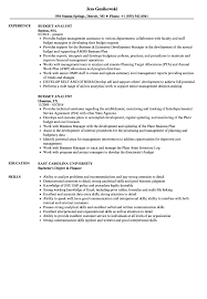Budget Specialist Sample Resume Analyst Resume Example Examples Of Resumes 20