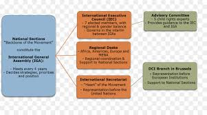 United Nations Organizational Chart Organizational Chart Text Png Download 1296 697 Free